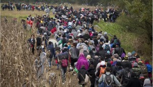 23301120_Croatia_Migrants_JPEG_04eaa.limghandler