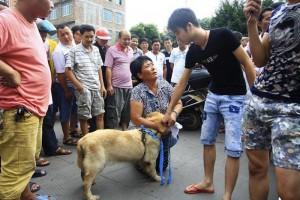 Chinese-Dog-Festival-1200