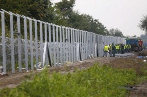 fence2 (1)