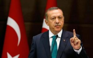Erdogan8b