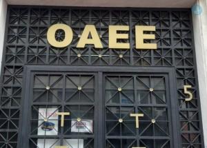 oaee-744x533