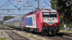 trainose1452590715